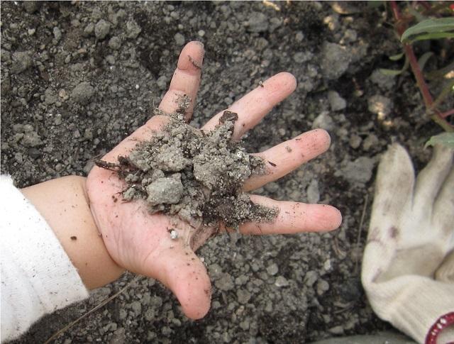 土遊びをする子供の手