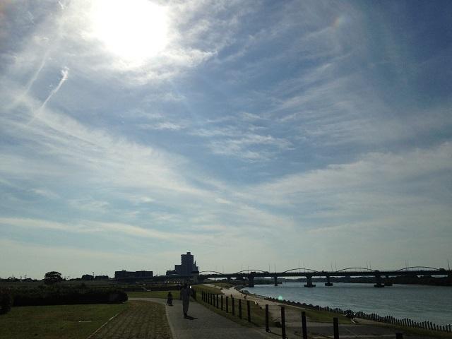 淀川河川公園の画像