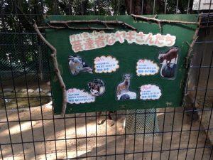 ヤギの名前が書かれた看板
