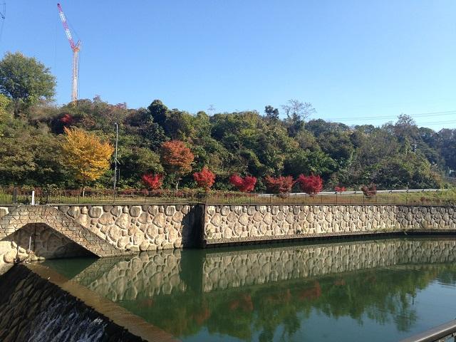 磐船神社の紅葉1