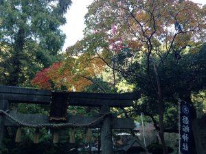 磐船神社の画像10