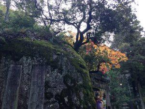 磐船神社の画像9