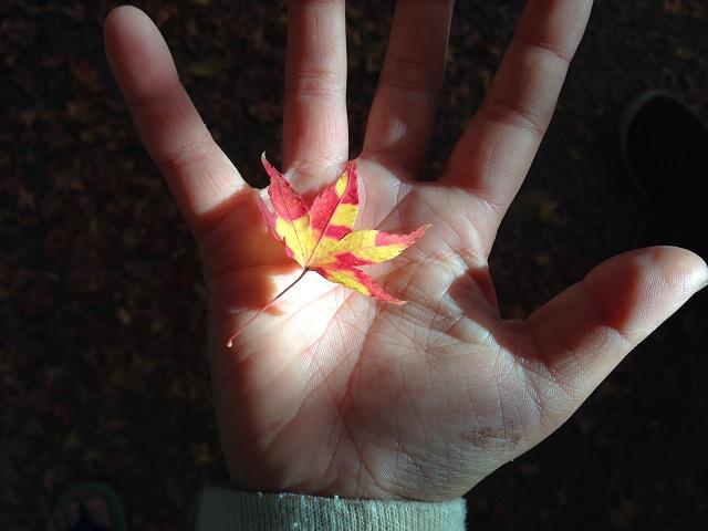 大門寺の紅葉4
