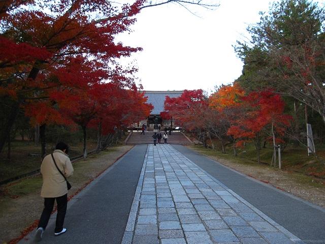 仁和寺の紅葉2