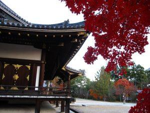仁和寺の紅葉4