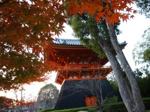 仁和寺の画像3